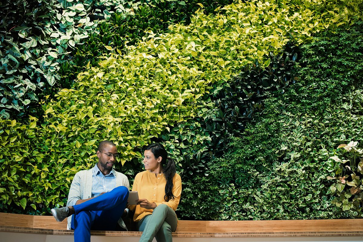 Why green culture attracts Gen Y