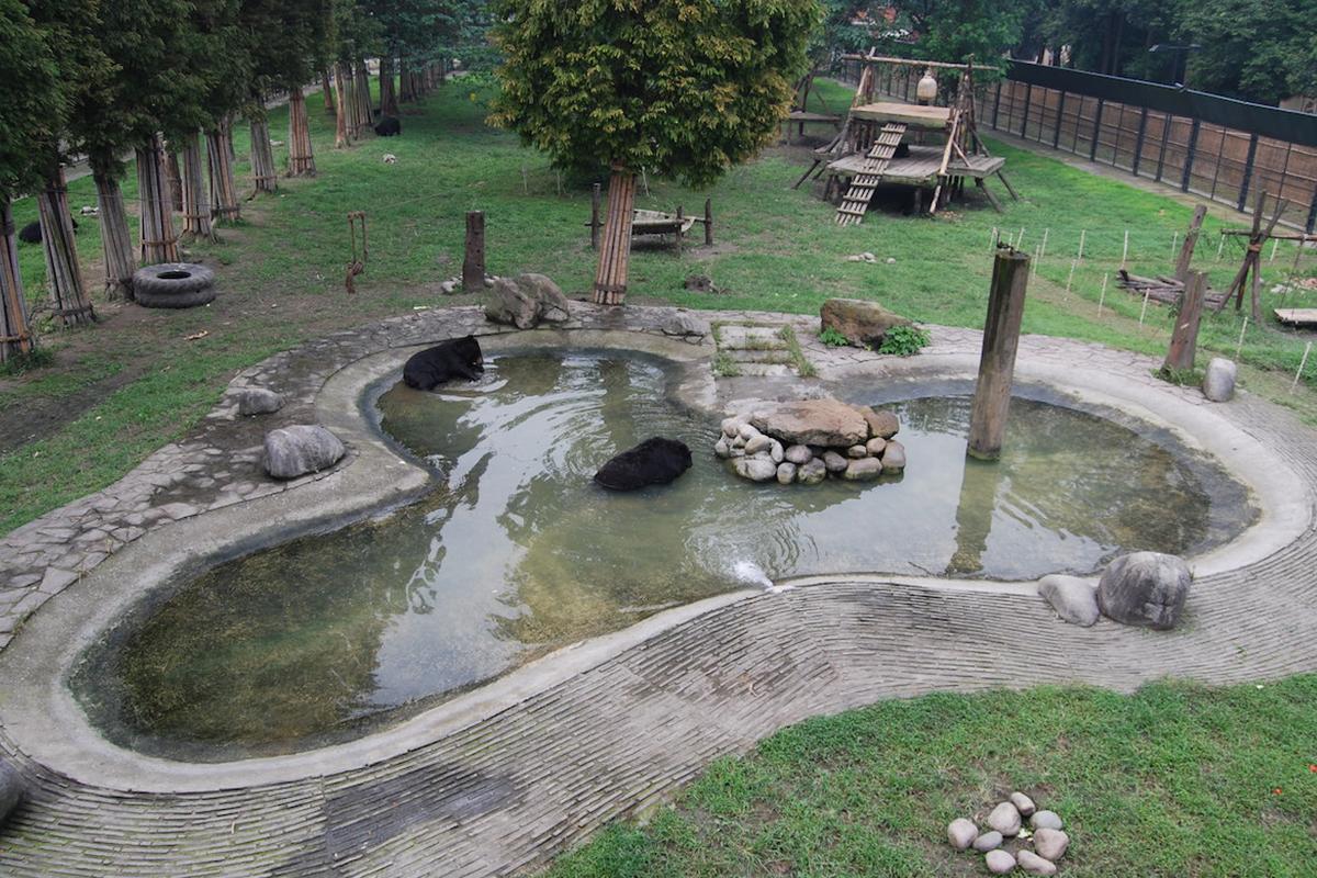 Animals Asia's China sanctuary