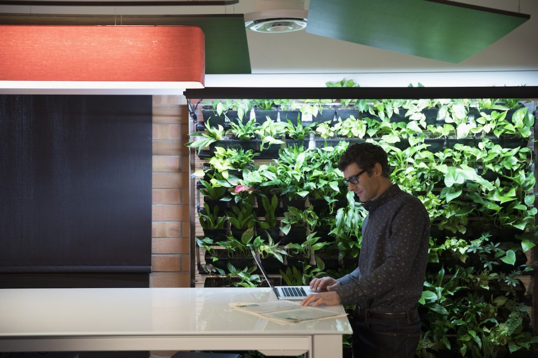 5 reasons to green your office