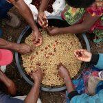 Fairtrade Farmers